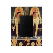 Male and female anatomy Picture Frame