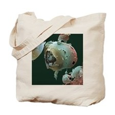 Aspartame crystals, SEM Tote Bag