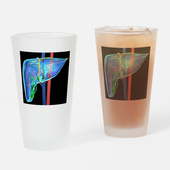 Human liver, artwork Drinking Glass