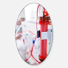 Kidney dialysis Decal