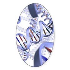 DNA helices Decal