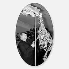 Ivan Yefremov, Soviet palaeontologi Decal