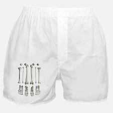 Leg bones, artwork Boxer Shorts