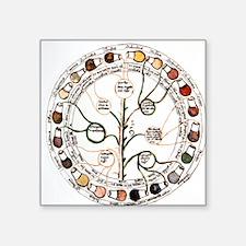 "Medieval urine wheel Square Sticker 3"" x 3"""