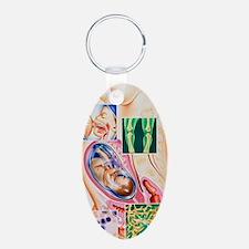 Pregnancy vitamin deficienc Keychains