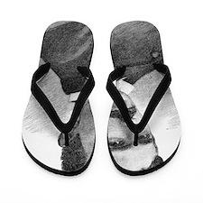 Nikola Tesla, Serb-US physicist Flip Flops