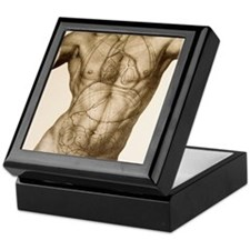 Positions of the internal organs Keepsake Box