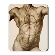 Positions of the internal organs Mousepad