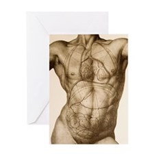 Positions of the internal organs Greeting Card