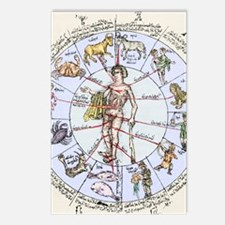 Medical zodiac, 15th cent Postcards (Package of 8)