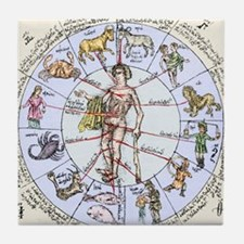 Medical zodiac, 15th century diagram Tile Coaster