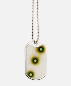 Adenovirus particles, TEM Dog Tags
