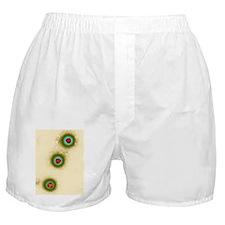 Adenovirus particles, TEM Boxer Shorts