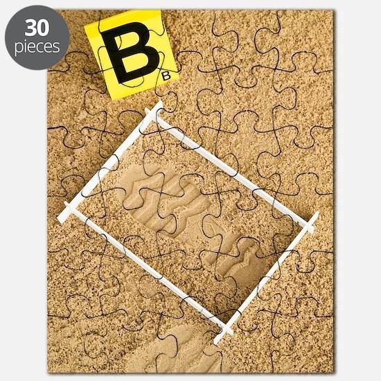 Shoe print evidence Puzzle