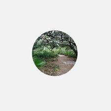 Econ River Wilderness Hiking Trail Mini Button