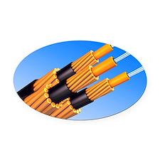 Optical fibre bundle for communica Oval Car Magnet