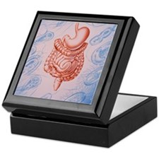 Artwork of digestive system Keepsake Box