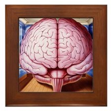 Artwork of human brain enclosed in dre Framed Tile