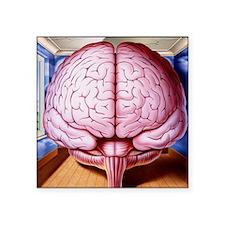 "Artwork of human brain encl Square Sticker 3"" x 3"""