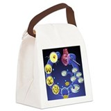 Stem cell research Canvas Lunch Bag