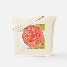 Vesicular stomatitis virus, TEM Tote Bag