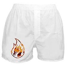 Flaming dragon Boxer Shorts