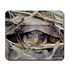 Camo Turtle Mousepad