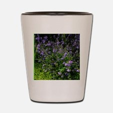 Southern Lilac Garden Shot Glass