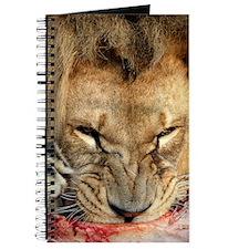Lion feeding Journal