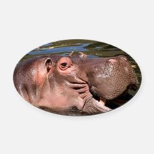 Happy Hippo Oval Car Magnet