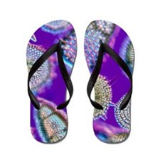 LM of an assortment of radiolaria Flip Flops
