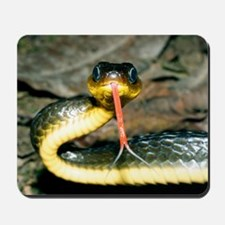 Machete savane snake Mousepad