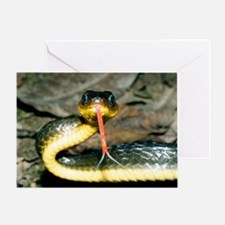 Machete savane snake Greeting Card