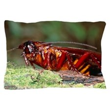 Long-winged cockroach Pillow Case