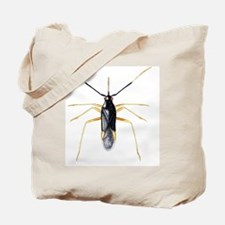 Male capsid bug Tote Bag