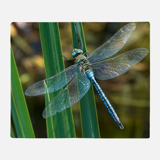 Male emperor dragonfly Throw Blanket