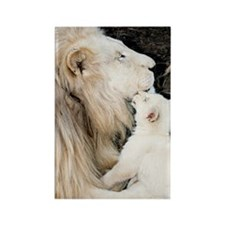 Male white lion and cub Rectangle Magnet