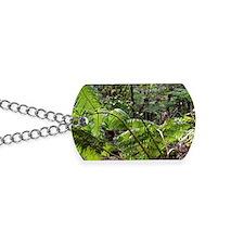 Rainforest Ferns Dog Tags