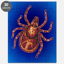 Lyme disease tick Puzzle