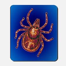 Lyme disease tick Mousepad