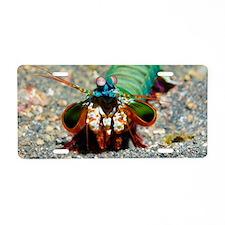 Mantis shrimp Aluminum License Plate