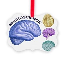 Neuroscience in All Directions Ornament