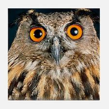 Long-eared owl Tile Coaster
