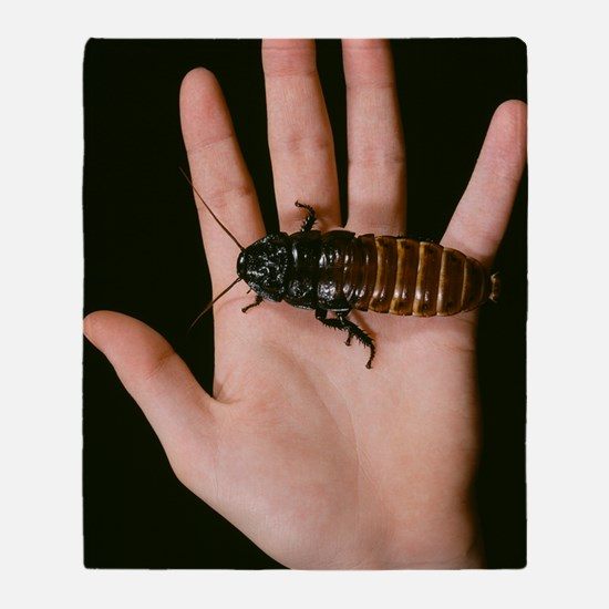 Madagascan giant hissing cockroach Throw Blanket