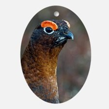 Male red grouse Oval Ornament