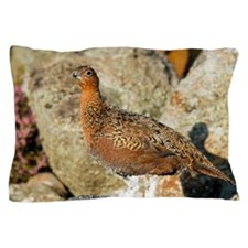 Male red grouse Pillow Case
