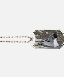 Male pintail Dog Tags