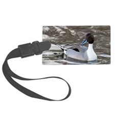 Male pintail Luggage Tag