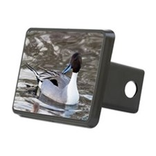 Male pintail Hitch Cover