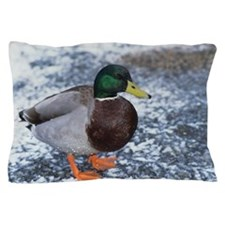 Mallard duck Pillow Case